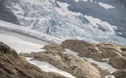 Alpi di Bernese Immagine Stock Libera da Diritti