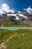 Alpi di Bernina e lago bianco - Poschiavo Svizzera Fotografie Stock
