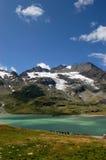 Alpi di Bernina e lago bianco - Poschiavo Svizzera Fotografia Stock Libera da Diritti