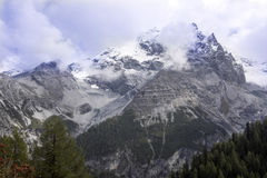 Alpi di estate ad un'altitudine di 1986, Italia Immagini Stock Libere da Diritti