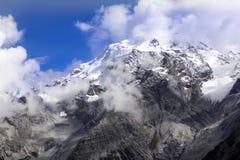 Alpi di estate ad un'altitudine di 2263, Italia Immagine Stock Libera da Diritti