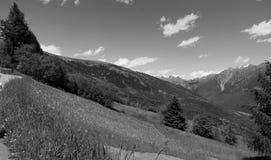 Alpi di estate in prati verdi Kanton Tessin Fotografia Stock