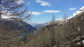 Alpi di Itlain Fotografie Stock