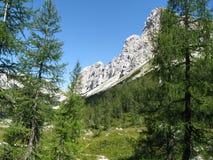 Alpi di Julian Fotografie Stock