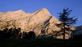Alpi di Julian - alba Immagini Stock