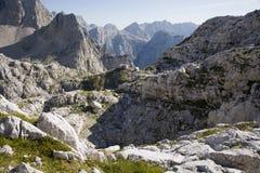 Alpi di Julian - DOM di Pogacevov del bower Fotografia Stock