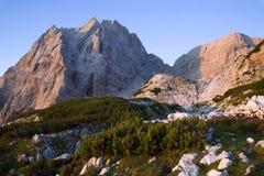 Alpi di Julian - indicatore luminoso di alba Immagine Stock Libera da Diritti