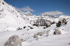 Alpi di Julian nella luce della luna Fotografie Stock Libere da Diritti