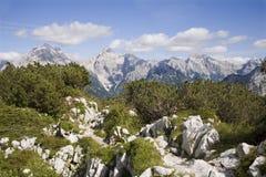 Alpi di Julian - paesaggio Immagine Stock