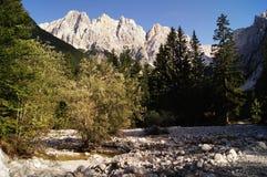 Alpi di Julian - picco dello spica di Gamsova Fotografia Stock
