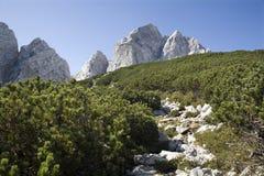 Alpi di Julian - picco di Jalovec Fotografie Stock Libere da Diritti