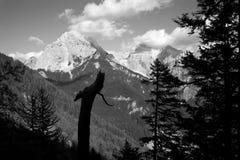 Alpi di Julian - siluetta Immagini Stock Libere da Diritti