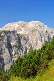 Alpi di Julian, Slovenia Fotografie Stock