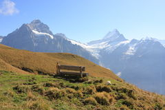 Alpi di Jungfrau in Svizzera Fotografia Stock Libera da Diritti