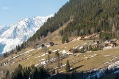 Alpi di Snowy - affacciate a Sud - l'Austria Fotografia Stock Libera da Diritti