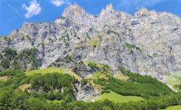 Alpi di Swis Immagine Stock Libera da Diritti