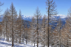 Alpi diCarinthia-Villach Immagine Stock
