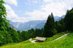 Alpi e il Salzbergwerk in Hallstatt, Austria Fotografie Stock