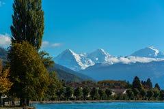 Alpi e lago Thun vicino a Spiez Fotografia Stock