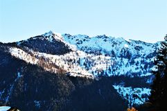 Alpi e neve svizzere Immagine Stock Libera da Diritti