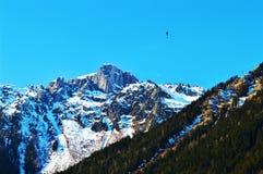 Alpi e neve svizzere Fotografia Stock