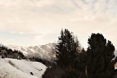 Alpi e neve svizzere in La Tzoumaz Fotografia Stock