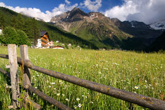 Alpi e prati di estate Fotografia Stock Libera da Diritti