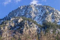Alpi europee, foresta, paesaggio Fotografia Stock Libera da Diritti