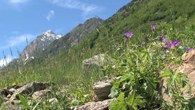 Alpi francesi, d'Ornon del passo in Francia video d archivio