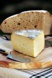 Alpi francesi Francia della Savoia francese del formaggio di Tomme de Savoia Fotografie Stock