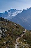Alpi francesi - Mont Blanc Fotografia Stock