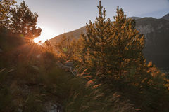 Alpi francesi, montagne di Vanoise ad alba Immagini Stock
