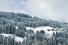 Alpi francesi, paesaggio di inverno Fotografia Stock Libera da Diritti