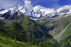 Alpi - Grossclockner Immagine Stock Libera da Diritti