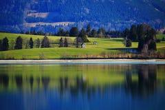 Alpi idilliache di Allgäu del paesaggio di Forggensee del lago Fotografia Stock