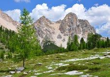 Alpi Italia delle dolomia Fotografia Stock Libera da Diritti