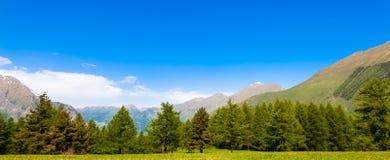 Alpi italiane Fotografie Stock Libere da Diritti
