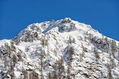 Alpi italiane della montagna nell'inverno Fotografia Stock Libera da Diritti