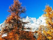 Alpi italiane di Snowy in autunno Immagine Stock