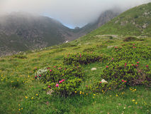 Alpi italiane; Rifugio Osp. Sottile Fotografia Stock