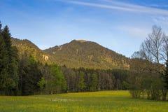 Alpi nel tempo di primavera Immagine Stock