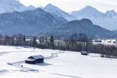 Alpi nella neve Immagini Stock