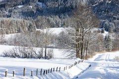 Alpi nella neve Fotografia Stock
