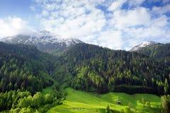 Alpi paesaggio, Austria Fotografia Stock