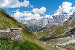 Alpi Passo Stelvio delle montagne Immagine Stock