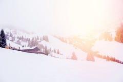 Alpi profonde della neve della Camera dell'Austria di funzionamento di corsa con gli sci della montagna Fotografia Stock Libera da Diritti