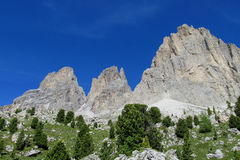 Alpi rocciose belle della dolomia Immagini Stock