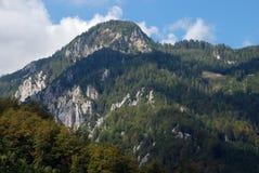 Alpi selvagge Fotografia Stock