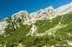 Alpi slovene Fotografie Stock