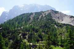 Alpi in Slovenia Fotografie Stock